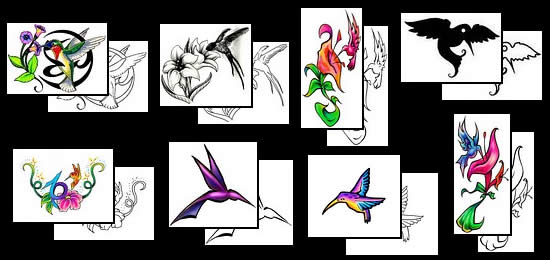 Hummingbird Tattoos Designs
