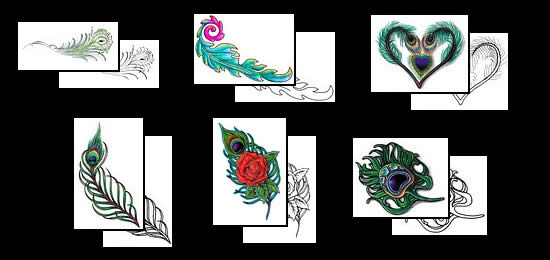 Peacock feathers as tattoo designs and symbols