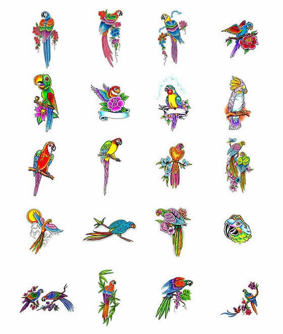 parrot tattoos what do they mean parrot tattoos designs symbols parrot tattoo meanings. Black Bedroom Furniture Sets. Home Design Ideas