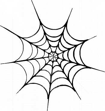 Spider web pictures pics images and photos for your for Easy drawing websites